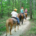 Popple Ridge Horse Trail